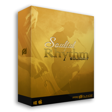 Soulful Rhythm Drum Kit
